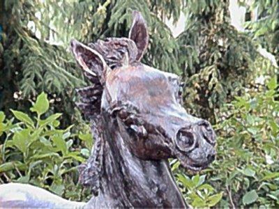 Detailleer het Paard Kubinec van het Brons