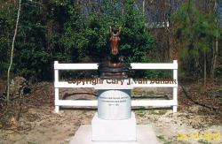Horse Civil War Memorial Statue For North Carolina.U.S.A