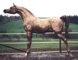 Lebensgröße Arabische Pferde Statue aus Bronze